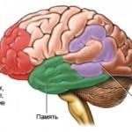 Причины-болезни-Альцгеймера-2-300x195