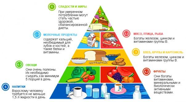 время правильного питания по часам