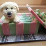 Забавная собачка из мастики в коробочке – торт, который удивит!