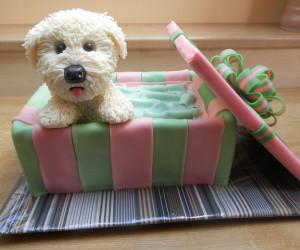 Забавная собачка из мастики в коробочке – торт, который удивит